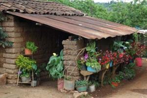 Vivienda Rural de Jalapa